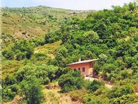 We love the accommodation and the feeling of a remote cozy hide away in the Sardinian hills