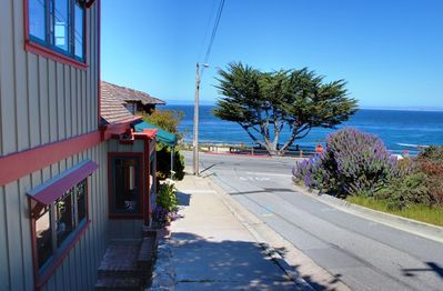 ~  - Just steps to miles of oceanfront walking and biking trails.