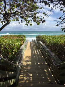 Photo for Prime Location, Steps to the Beach, Boutique Beachside Bungalow 11