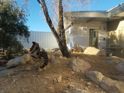 Photo for Cleanest Guest Studio in Joshua Tree/Coyote Hole