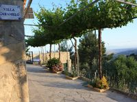 Lovely rural retreat amongst olive & almond trees