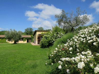 Photo for Apartment Podere Fonte Sala (MFL102) in Montefalco - 6 persons, 3 bedrooms
