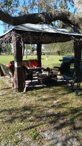 Photo for Serene country setting for your Florida vacation Adventure.