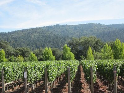 Photo for Napa Charm on Silverado  Course;  Spa, hills, Wineries Nearby  (shorter stay ok)