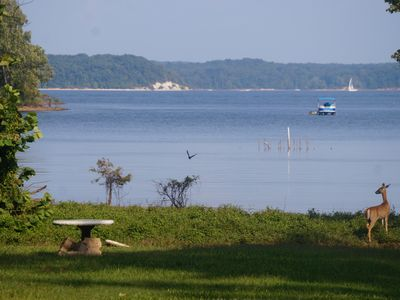 KY Lake *WATERFRONT* --2nd house available -- kayaks