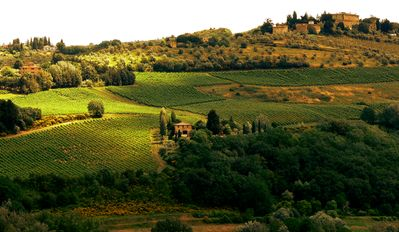 Photo for Independent Barn for Relaxation & Nature on Tuscan Hills