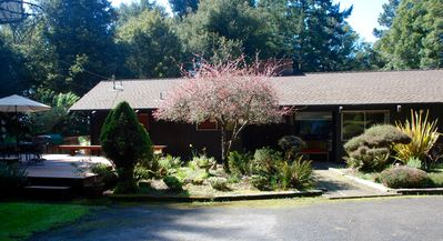 Photo for Beautiful Home in the Heart of the Majestic Redwoods.  Secluded on 10 acres.