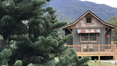 Christmas Tree Farm Asheville Nc.A Hand Crafted Cabin Built In The Middle Of A Christmas Tree Farm Waynesville