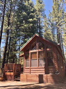 Photo for The Bear Den - South Lake Tahoe (Pets Welcome)