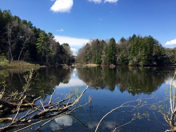Mountain Meadow Preserve, Williamstown, Massachusetts, United States of America