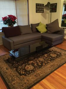 Living room/sofa bed