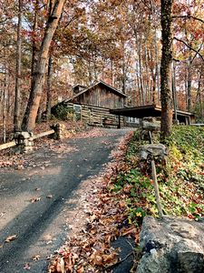Front view  - Driveway to cabin