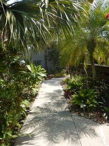 Front walkway to unit