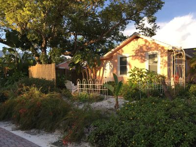Coral Cottage is nestled under an ancient camphor tree in downtown Dunedin.