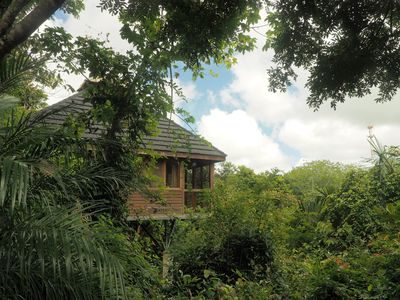Photo for Jungle Canopy Bungalow at Taru Rentals