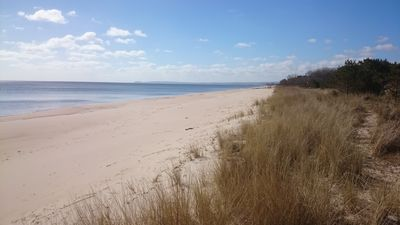 Photo for Beach cottage in nature reserve with one minute to the sea and the white sand beach