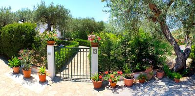 Photo for Beautiful and charming villa near the beach, close to Cefalù
