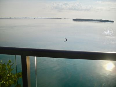 The glass railing provides for these fabulous, expansive views.