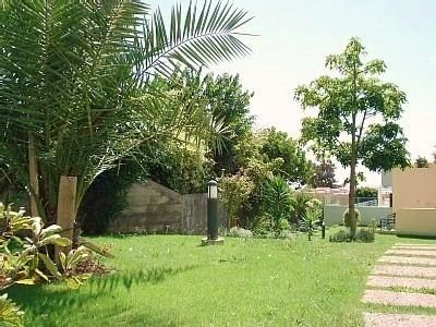 Lush, tropical gardens of the apartments