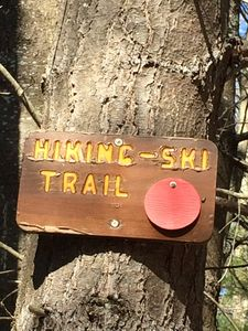 Photo for Private hiking trail. Enjoy the ADK splendor. Pet Friendly. Ranch Home. WiFi