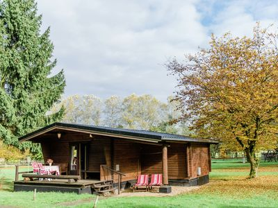 Photo for Holiday home with terrace in Südheide Nature Park for families and horse lovers