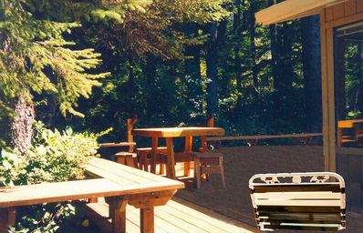 Secluded Wrap-around Deck overlooking Woods