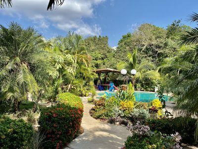 Photo for 🌴☀️Tropical Oasis Near Conchal Brasilito Flamingo-W/Pool WiFi and A/C🌴☀️