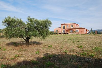 View to Villa from open field with lovely olive trees & haha where horses roam