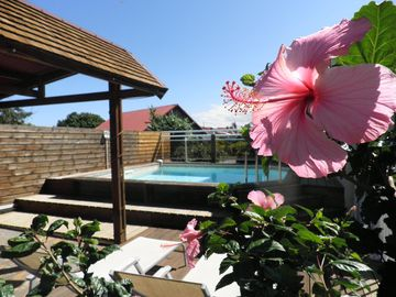 Beautiful Furnished Penthouse with pool, sleeps 2/4. conditioned