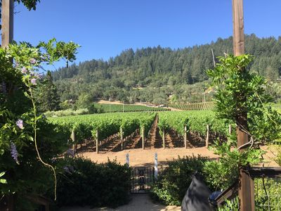 Vineyard view from deck and interior