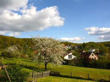 Bellenberg, Horn-Bad Meinberg, Germany