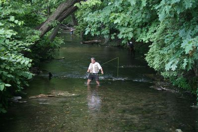Wonderful trout stream 100 yards from the house