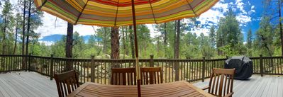 Our backyard.... The Prescott National Forest.... view from our deck!