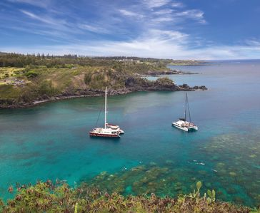 Photo for Snorkel, windsurf, hike, shop and much more!