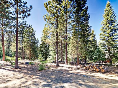 Yard - Tall trees surround the property, adding extra privacy and charm.