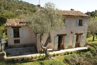 Traditional provencal villa set in a 200 yr old olive grove