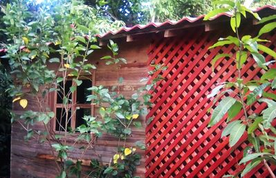 Photo for Budget Jungle Cabin over Montezuma in Soul Fire Casitas