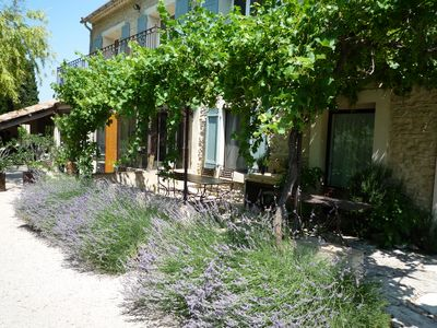 Photo for Farmhouse in Provence, farmhouse, private in a 7 hectares park, heated pool