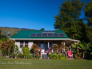 Secluded Honeymoon Cottage on eight secluded acres all for U ~ WiFi~ ECO