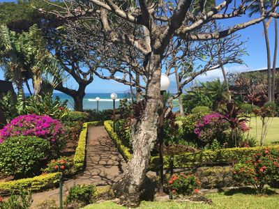 Photo for Kuleana Ocean View $169/night Spring 2019