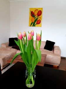 Photo for Apartment / app. for 3 guests with 52m² in Dresden (93016)