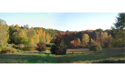 View to Lake with Fall Foliage