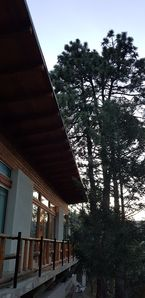 Photo for Beautiful Cabin in Bosques de Monterreal.