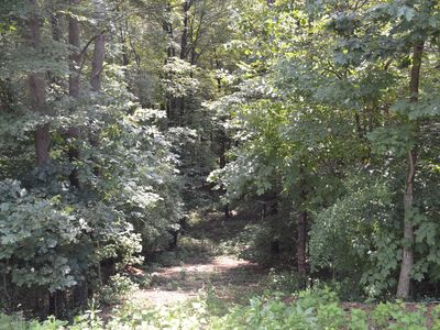 LAKEWAY GETAWAY - 6.5 acres with hiking trails. Raystown Lake Area. DOG FRIENDLY