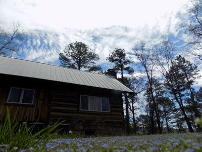 Cabin amid blue spring flowers
