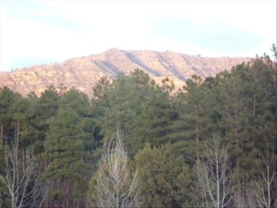 Photo for Secluded Forest Retreat with Gorgeous Views of Mogollon Rim. COUPLES SPECIAL $.