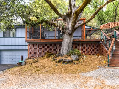 Photo for Comfortable 2BR Placerville Cabin w/Forested Views