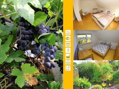 Photo for At the grapevine, The house in Bad Hersfeld, very spacious, close to the center