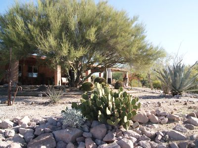 Photo for New! Gorgeous Views, Privacy, Pristine Pool Near Catalina Mountains, WiFi, More!