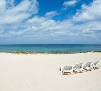Photo for BEST REVIEWED CONDO IN COZUMEL $SEPT, OCT, DEALS$ BOOK NOW Private Rooftop Trce